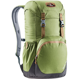 Deuter Walker 20 Sac à dos, pine-graphite